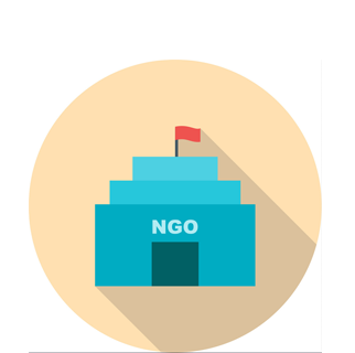 Non governmental organisations