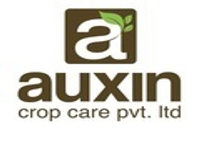https://paruluniversity.ac.in/AUXIN