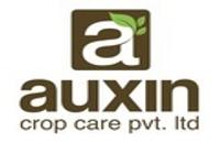 https://paruluniversity.ac.in/Auxin