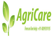 https://paruluniversity.ac.in/AGRICARE